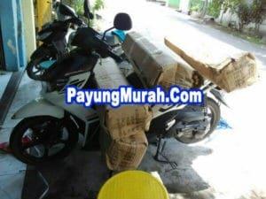 Grosir Payung Promosi Murah Papua Barat